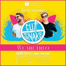 Cut Snake w/ TREO